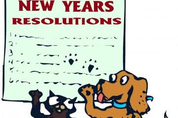 consejos-para-escribir-resoluciones